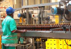 Prodesi já criou mais de 9000 empregos só este ano