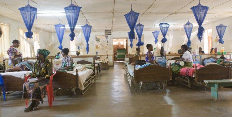 Resultado de imagem para mortes por malaria