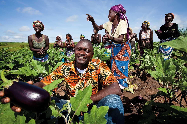 Resultado de imagem para africa agricultura