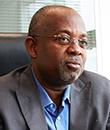 Plantações de madeira de Angola podem promover o desenvolvimento económico e aumentar as reservas externas